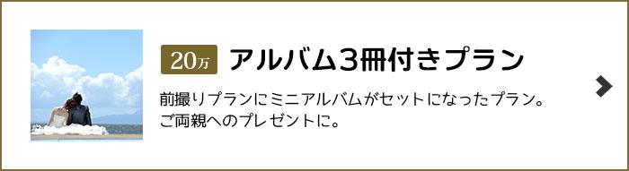 ウェディングタウン アルバム3冊付きプラン