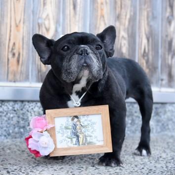 【熊本店 前撮りより】愛犬と…♡