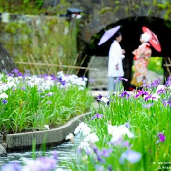 【熊本店 前撮りより】花菖蒲祭り