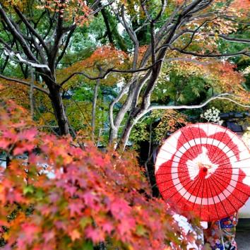 【熊本店 前撮りより】紅葉真っ盛り!