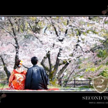 【熊本店 前撮りより】桜咲く