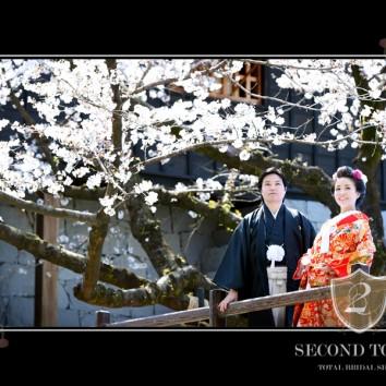 【熊本店 前撮りより】城と桜