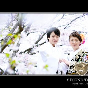 【熊本店 前撮りより】桜に囲まれて