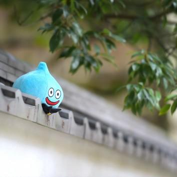 【福岡店 前撮り】人気スポットに!!