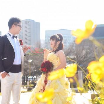 (前撮り 福岡店)春の陽気