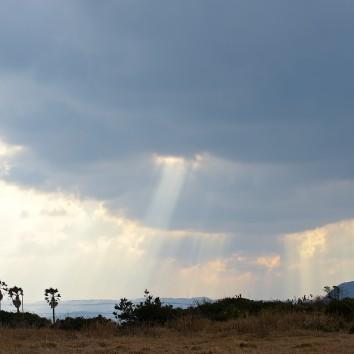 【福岡店 前撮り】天使のはしご