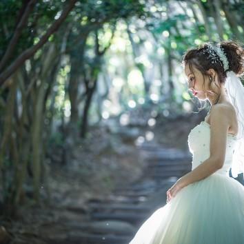 【福岡店 前撮り】森の中で幻想的に