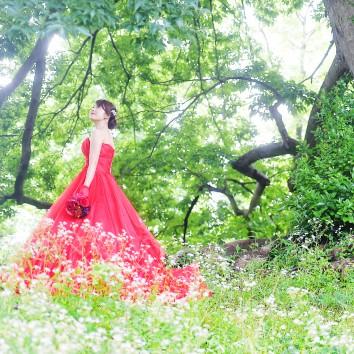 (福岡店 前撮り) 赤のドレス