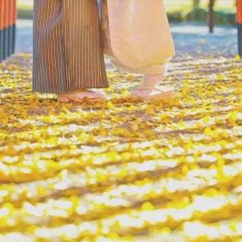 【熊本店 前撮りより】銀杏の絨毯