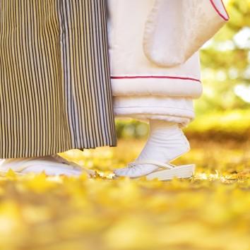 (前撮り 福岡店) 黄色い絨毯♪